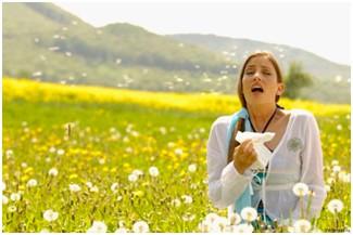аллергия чихание